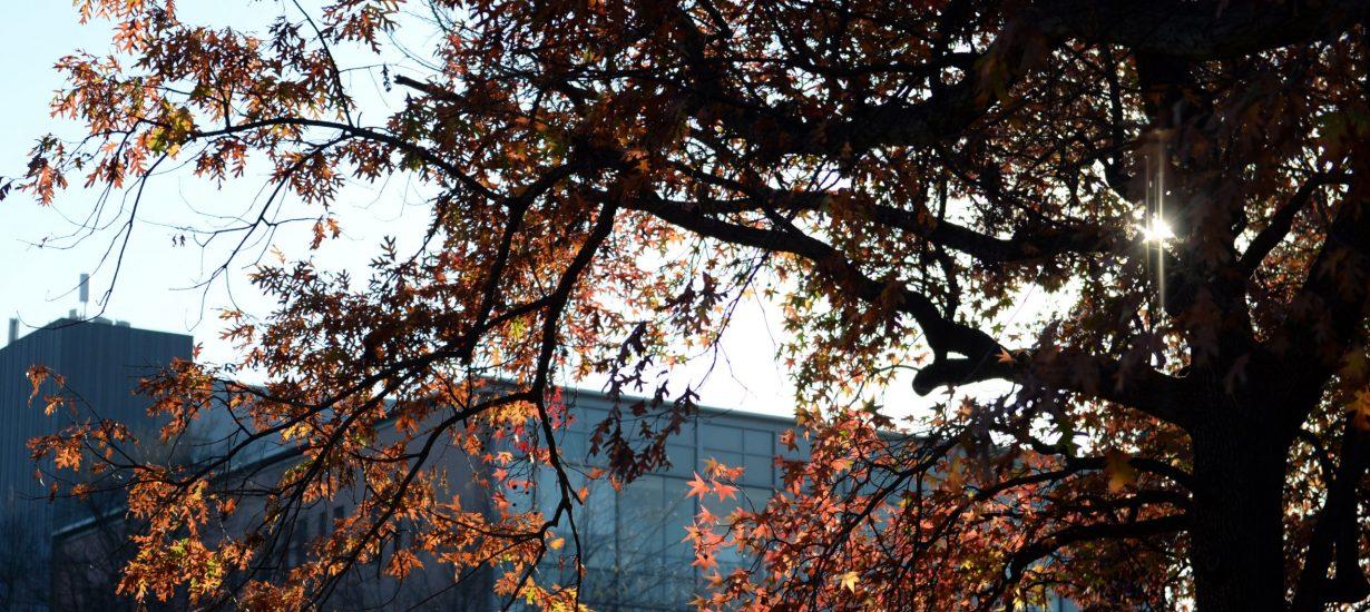 UNC's FedEx Global Education Center
