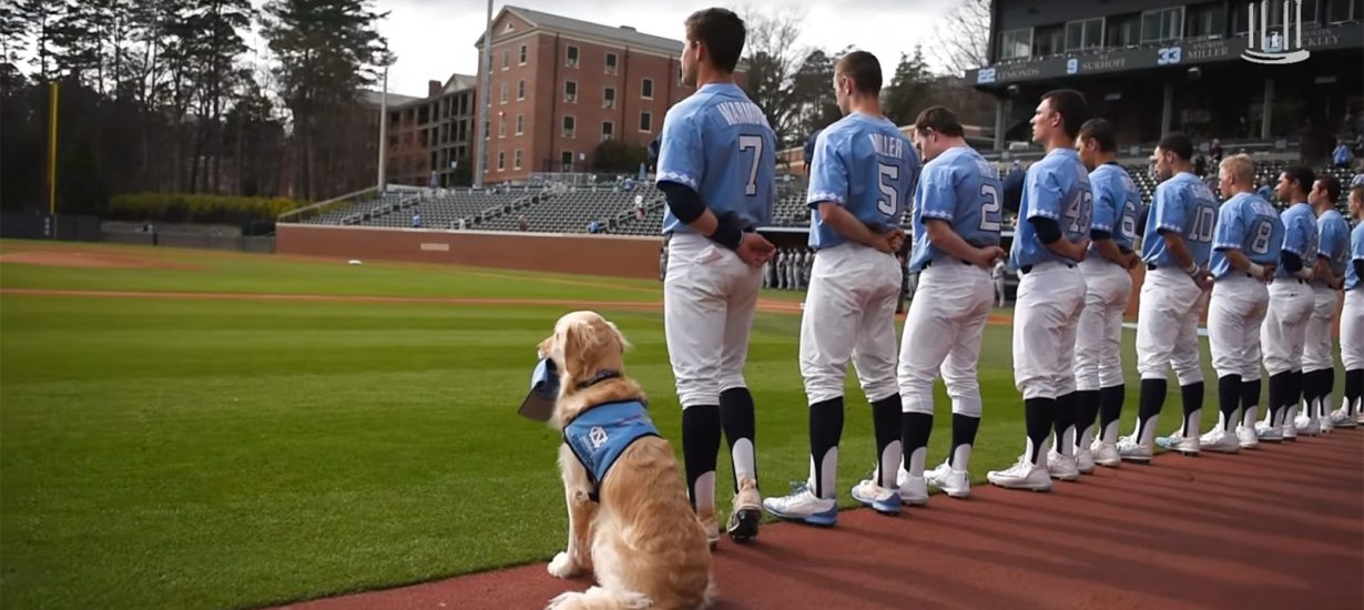 Remington stands with the team and holds his hat or a glove during the national anthem, carries water to umpires and offers up fist bumps and high fives to players. (UNC photo)