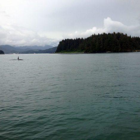 2018 Exploring Southeast Alaska
