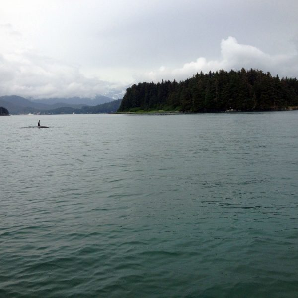 Alaska5