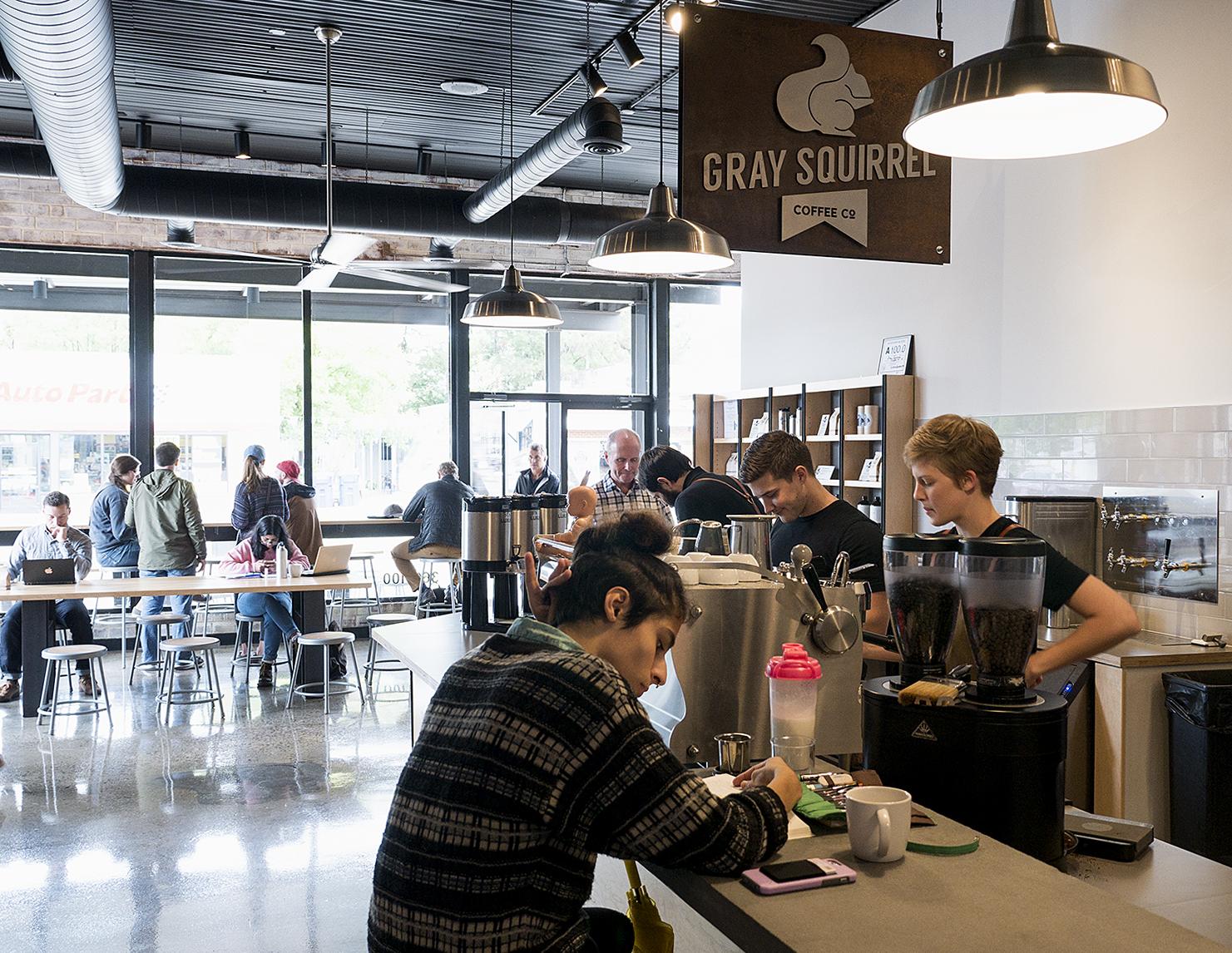 Gray Squirrel Coffee Co