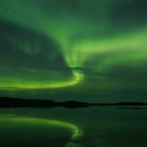 2021 Northern Lights and the Canadian Caribou Migration